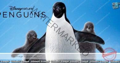 Penguins (2019) | ඇඩෙලි පෙන්ගුයින්ලා මිලියනයක්…