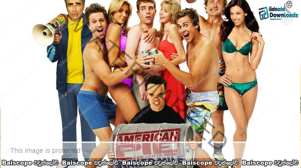 Watch American Pie Presents: The Naked Mile (2006) online
