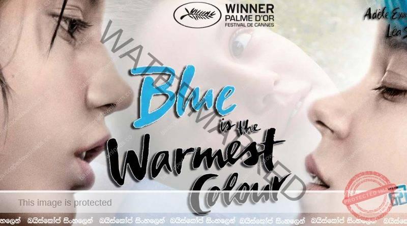 Blue Is The Warmest Color (2013) | සම්මත සමාජයක අසම්මත ප්රේම වෘතාන්තය..(18+)