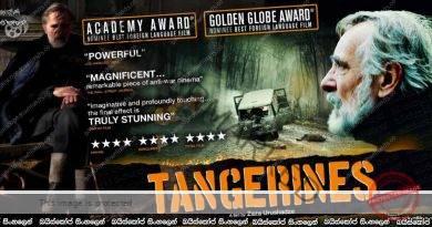 Tangerines (2013) | ජමනාරං මැද යුද්ධය!