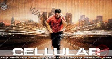 Cellular (2004) | ජීවිතයත් මරනයත් අතරට දුරකථනය පැමිනි විට…