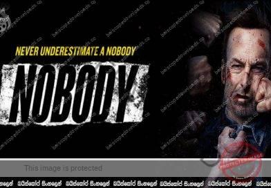 Nobody (2021) | මම කවුරුවත් නෙවෙයි.!