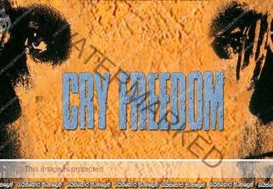 Cry Freedom (1987) | හඩනු මැන නිදහස..