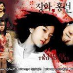 A Tale of Two Sisters (2003)   අඳුරැ රහස් නැත්තේ කාටද?